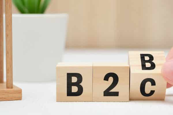 b2b vs b2c marketing comparison by Pixaura